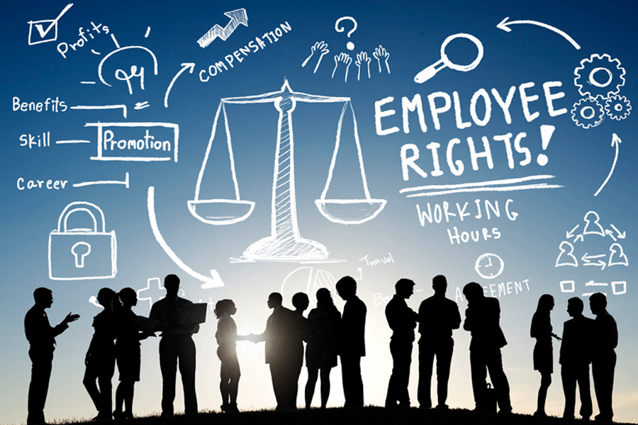 business management employment law labor relations essay Mgmt 3340 employment law and labor relations this course provides students with an overview of the hr practices order a similar essay written from scratch business management post navigation.
